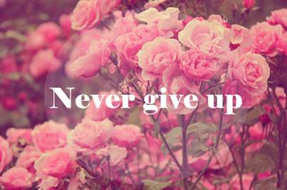 never_give_up.jpg